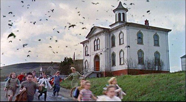 Birds kids running away