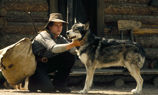 Ethan hawke in White Fang
