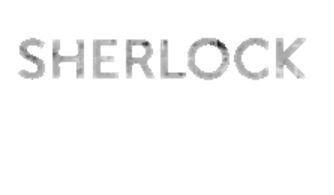 Sherlock panel