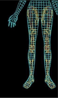 Bionic Woman legs