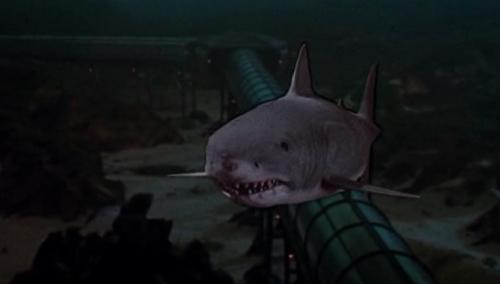 Jaws 3-d shark
