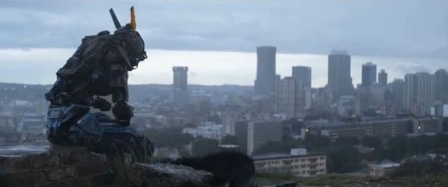 Chappie dog skyline