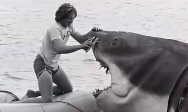 A close up for Bruce the shark in Jaws