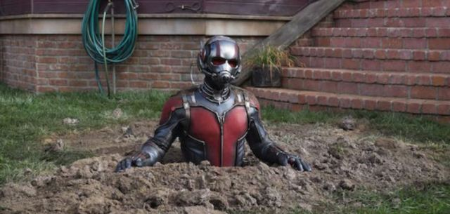 Ant-man in trouble