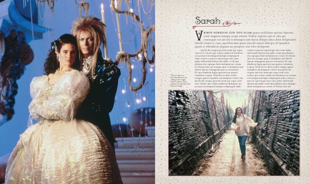 Labyrinth preview book
