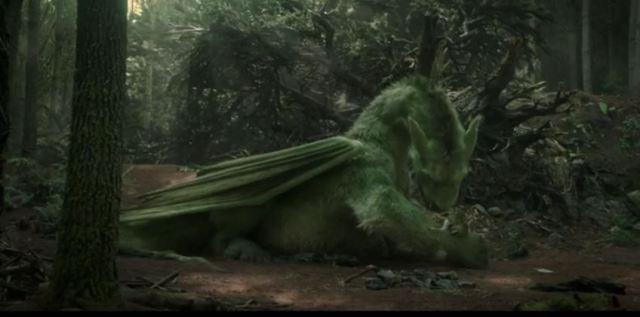Pets Dragon clip