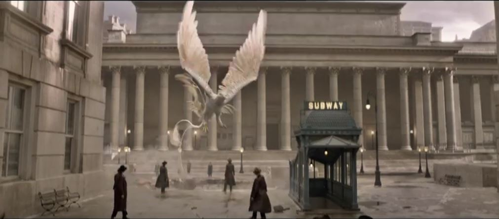 Image result for fantastic beasts and where to find them movie