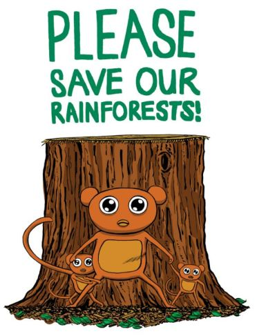 Mickey Lam Please Save Our Rainforests